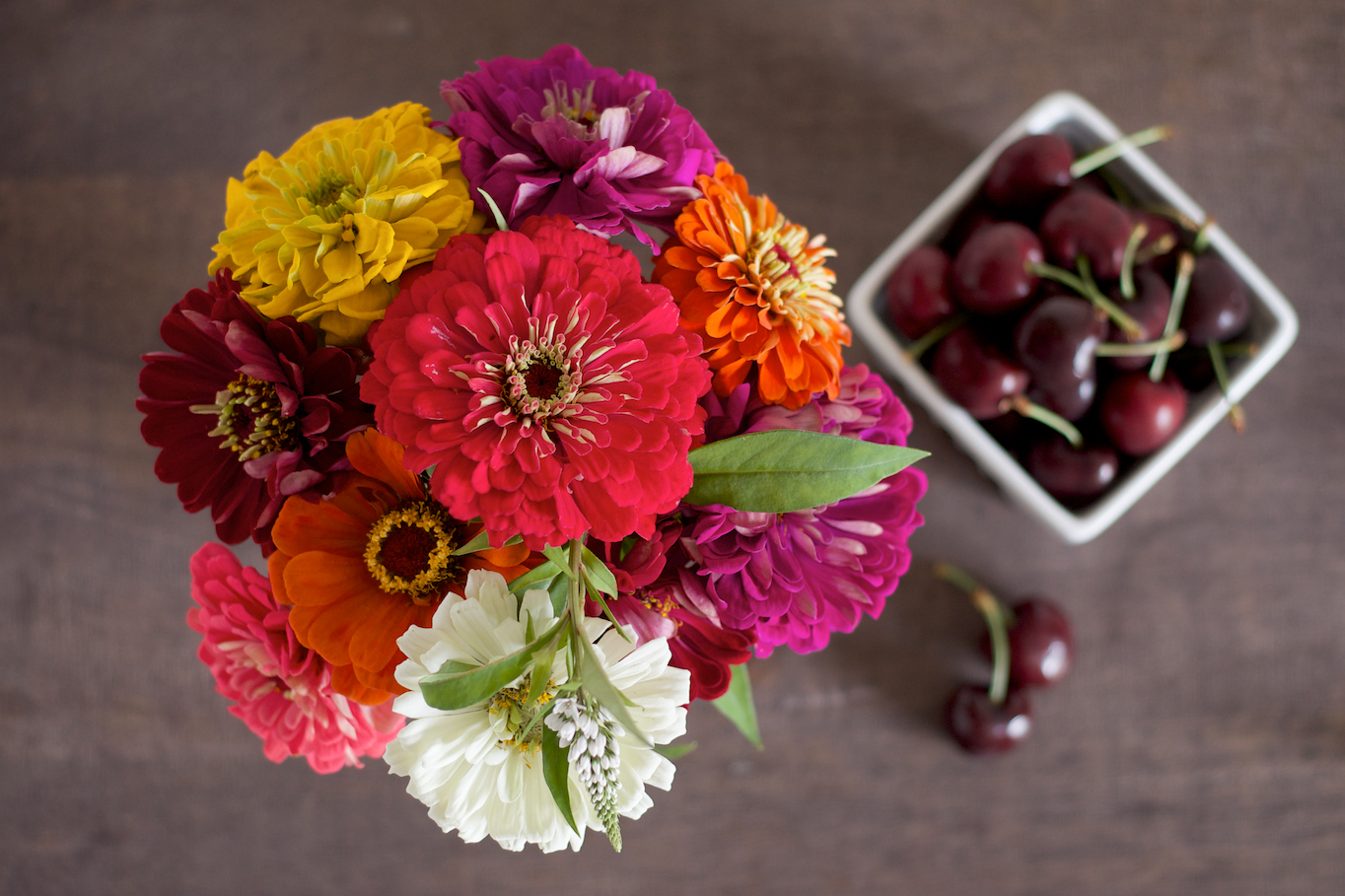 Zinnias and Cherries